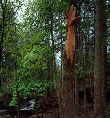 Giant-Hand-(Simon-O'Rourke,-Galles)